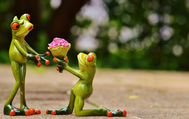 A marriage proposal, two figurine frogs